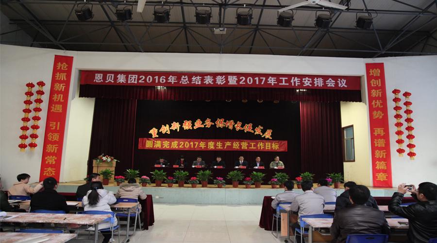 集团公司召开2016年度总结表彰暨2017年度工作安排会议